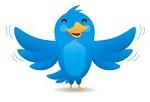 20 tipos de tweets, Guía rápida de referencia para tuiteros noveles