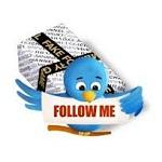 Como saber cuantos de nuestros seguidores son fakes o falsos