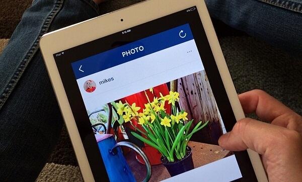 Instagram para negocios: conviértete en experto en marketing visual